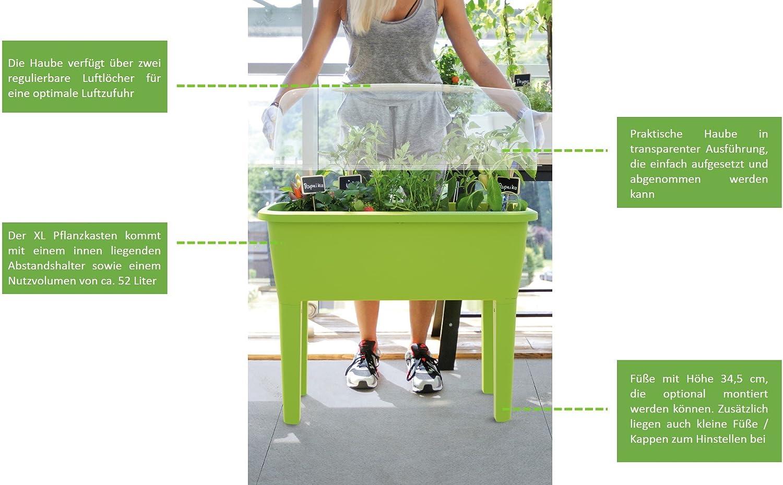 KREHER Hochbeet, Anzuchtbeet Aus Kunststoff In Anthrazit Oder Grün. Mit 52  Liter Nutzvolumen, Glocke Mit Regulierbaren Lüftungsöffnungen Und Hohen  Beinen.