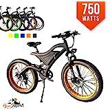 Amazon.com : Motorized Drift Trike 6.5 HP 40 MPH : Sports