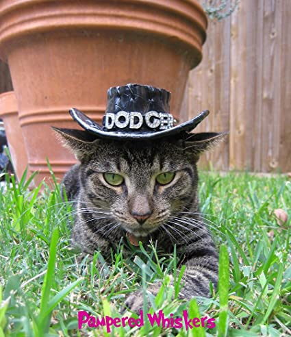 Amazon.com   Pampered Whiskers Black Cowboy Hat for Dogs and Cats ... 067765db38de