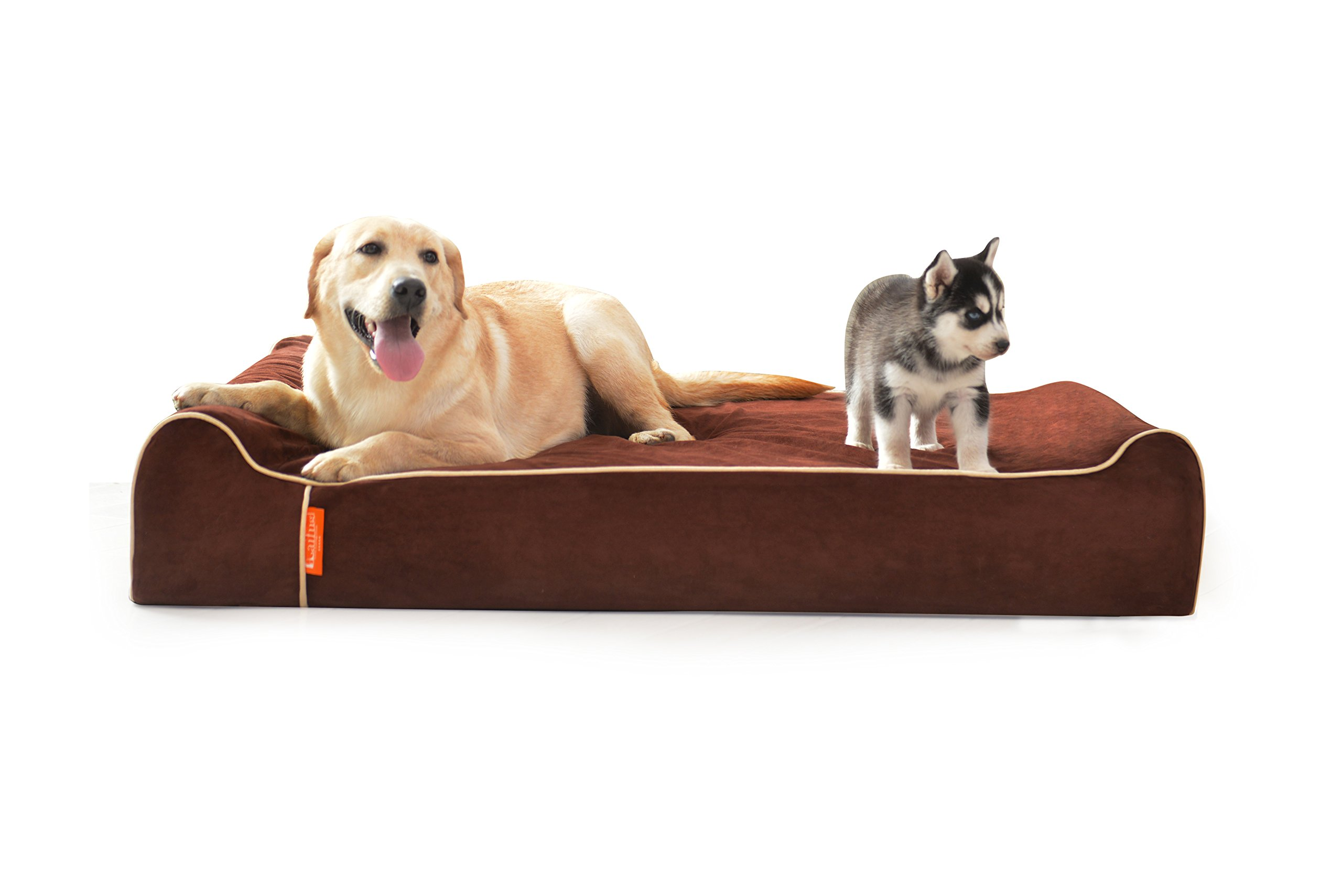 LaiFug Orthopedic Memory Foam Jumbo Large Dog Bed pillow(50''x36''x9'', chocolate) Durable Waterproof Liner,Removable Washable Cover