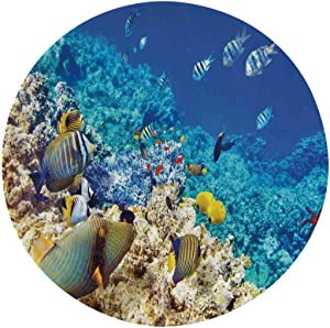 "Ocean Decor 10"" Dinner Plate,Barrier Reefs Covered Sea with Lagoon Anemonefish Picture Ceramic Decorative Plates,Dining Table Tabletop Home Decor,Turquoise Yellow"
