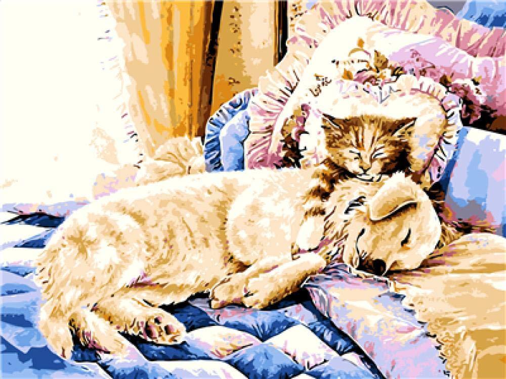 Kits pintura por números- Gatos y perros íntimos -40x50cm - para ...