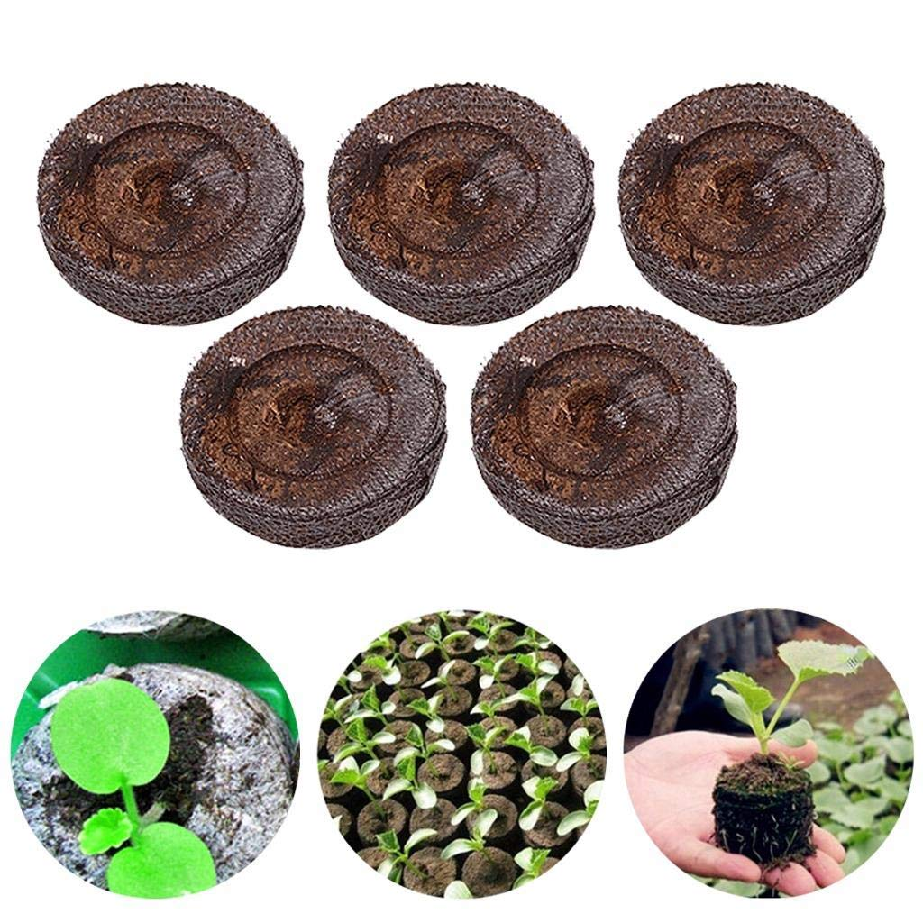 LONG7INES 5Pcs 25mm Seed Starting Plugs Pallet Seedling Soil Block, Seed Fertilizer Nutrient Block Compressed Peat Block Plant Starter Pellets, Peat Pellets Starting Plugs Pallet Seedling Soil Blocks
