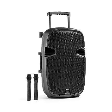 Malone Bushfunk 45 altavoz activo (900 W, Bluetooth, batería, puerto USB, entrada SD, salida RCA, MP3, micro receptor integrado VHF, micrófonos ...