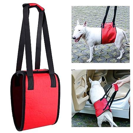 YIXUAN - Arnés de apoyo para perro, soporte para elevación de ...
