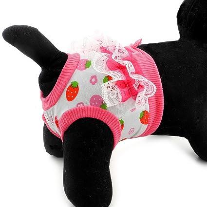 SMALLLEE_LUCKY_STORE Pañal pequeño para perros Pañal para gatos Pantalones sanitarios reutilizables para mujer Pantalones sanitarios de