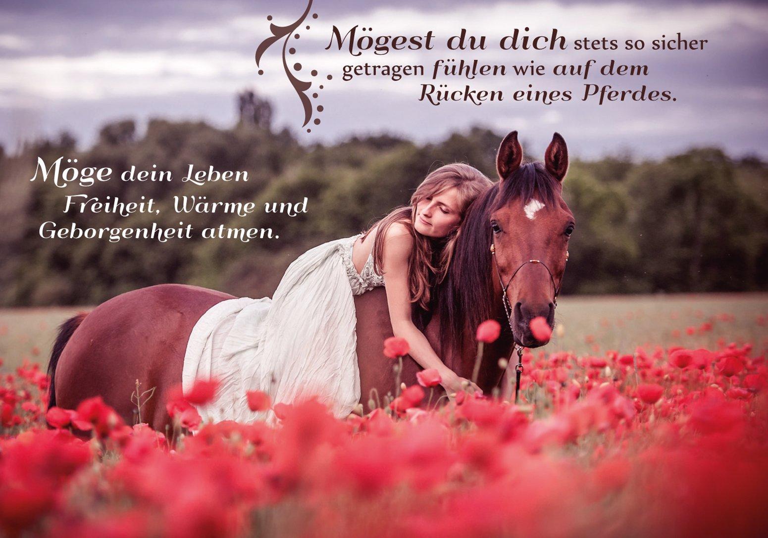 Der Segen Der Pferde Krafttiere Der Lebenskraft Freiheit Und