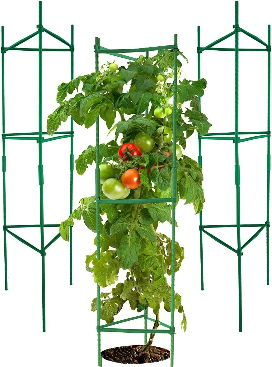 GoOutdoor Lab Tomato Cages Assembled Plant Supports, 4 Feet Plant Cages Tomato Stakes Garden Cages Trellis for Climbing Vegetables (3 Pack)