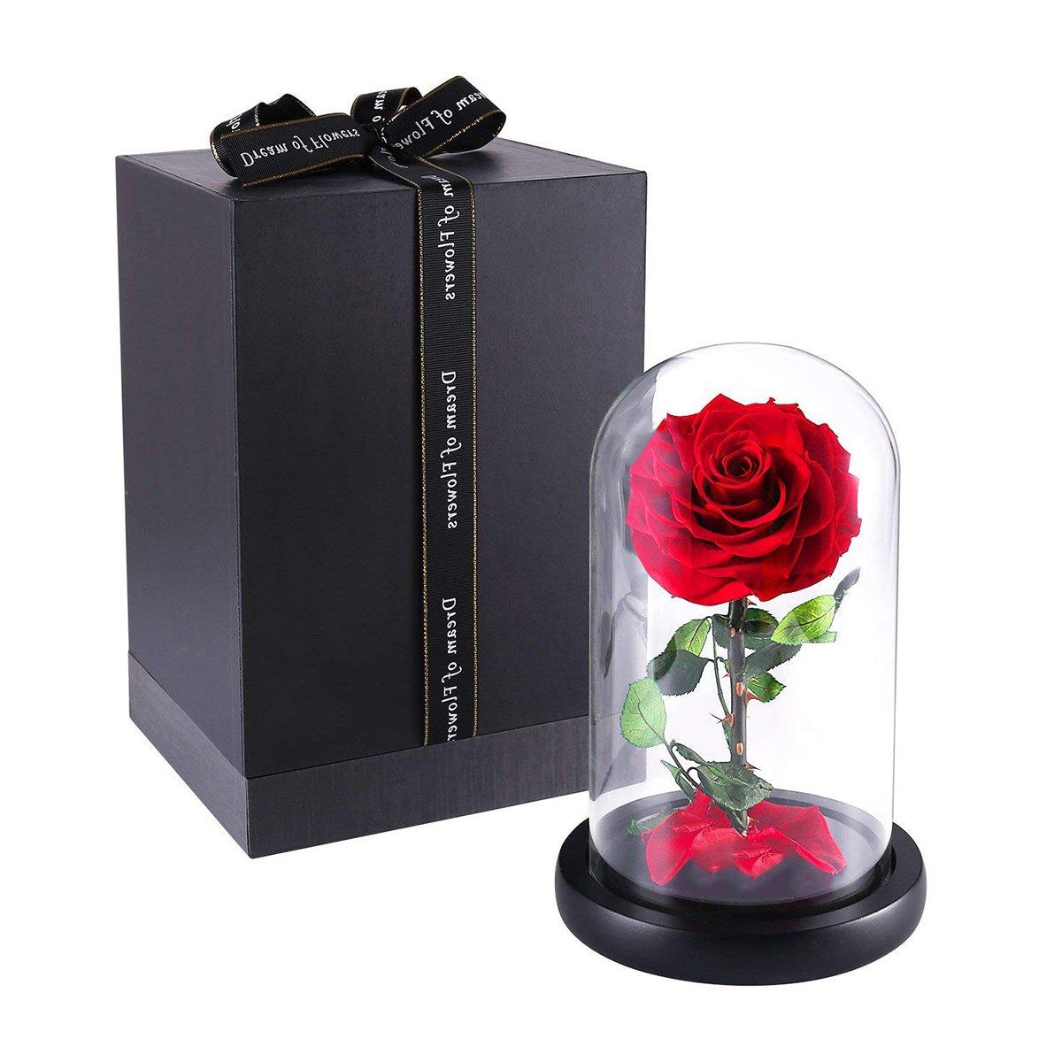 icheapローズ、手作りForever花、美女と野獣ローズwith Fallen花びらwith高級ギフトボックスの誕生日、バレンタインの日、結婚式、記念日のガールフレンド、レディース、お母さん、妻 26 * 16 * 16cm レッド B07FR79N95 レッド