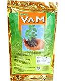 Green VAM - Bio Fertilizer - Vesicular Arbuscular Mycorrhizae - Quantity : 1 KG