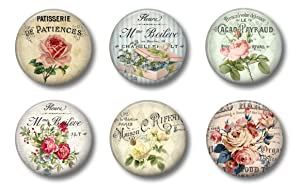 "French Cottage Chic Flower Magnets - Cute Locker Magnets For Teens - Set of Six 1.75"" For Whiteboard Office or Fridge (French Flowers)"