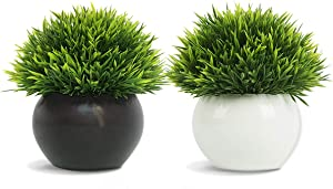FEILANDUO 2 Packs Artificial Plants Potted Fake Grass Home Office Desktop Decor Greenery Mini Green Plants (Black+White)