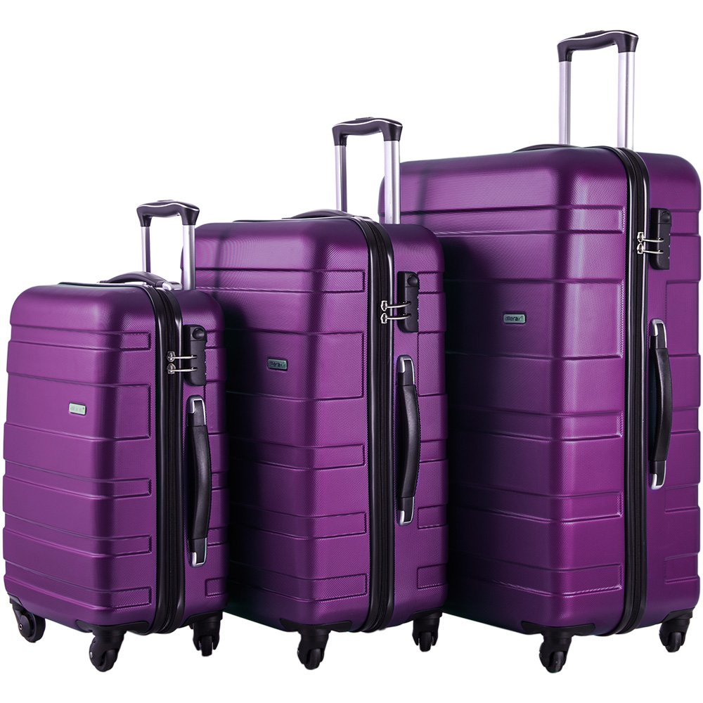 Merax Afuture 3 Piece Luggage Set Lightweight Spinner Suitcase(Purple)