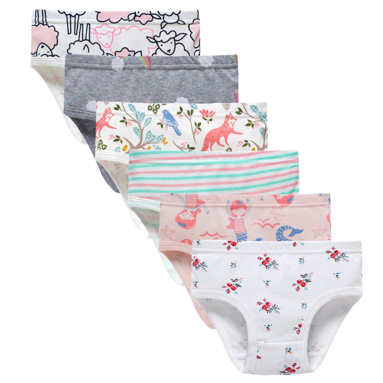 Baby Soft Cotton Panties Little Girls'Briefs Toddler Underwear (Pack of 6) 2-3 Years