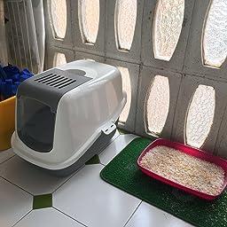 GATERA Nestor Blanco-Gris: Amazon.es: Productos para mascotas