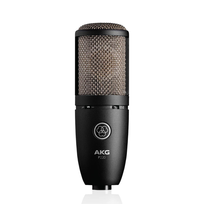 AKG Pro Audio P220 Vocal Condenser Microphone, Black