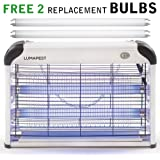 LumaPest Bug Zapper & Indoor Electric Insect Killer: Powerful 2800V 20W Bulbs Protection Against Flies - Mosquitoes Pests   Covers 6,000 Sq. Ft.   Free 2-Pack Replacement Bulbs Included