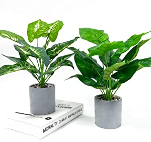 WXBOOM 2pcs Fake Plants Artificial Potted Plants for Home Office Farmhouse Bathroom Kitchen Decor Indoor