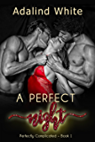 A Perfect Night (Perfectly Complicated Book 1) (English Edition)