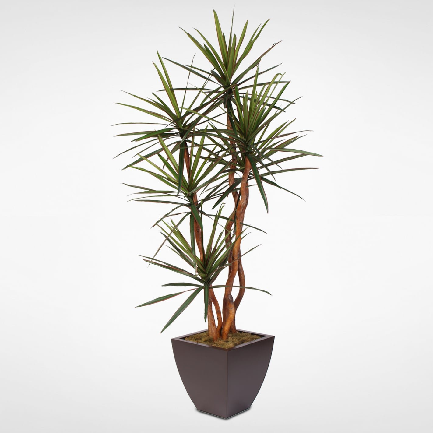 Amazon Jenny Silks Artificial Yucca Tree With Natural Wood