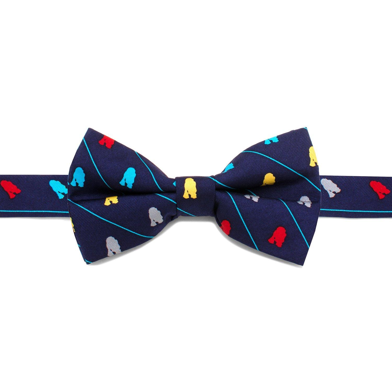 Star Wars R2D2 Striped Big Boys' Silk Bow Tie, Officially Licensed