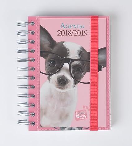 Grupo Erik Editores Studio Pets - Agenda escolar en francés ...