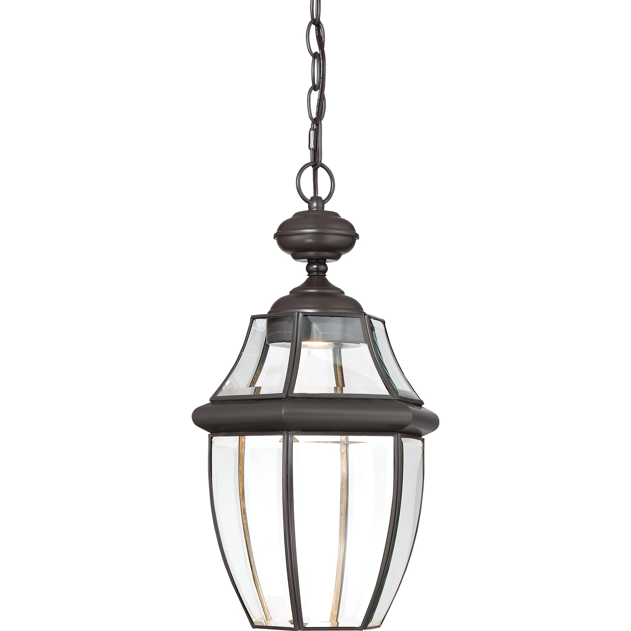 Quoizel LED Outdoor Hanging Lantern NYCL1911Z, Large, Medici Bronze