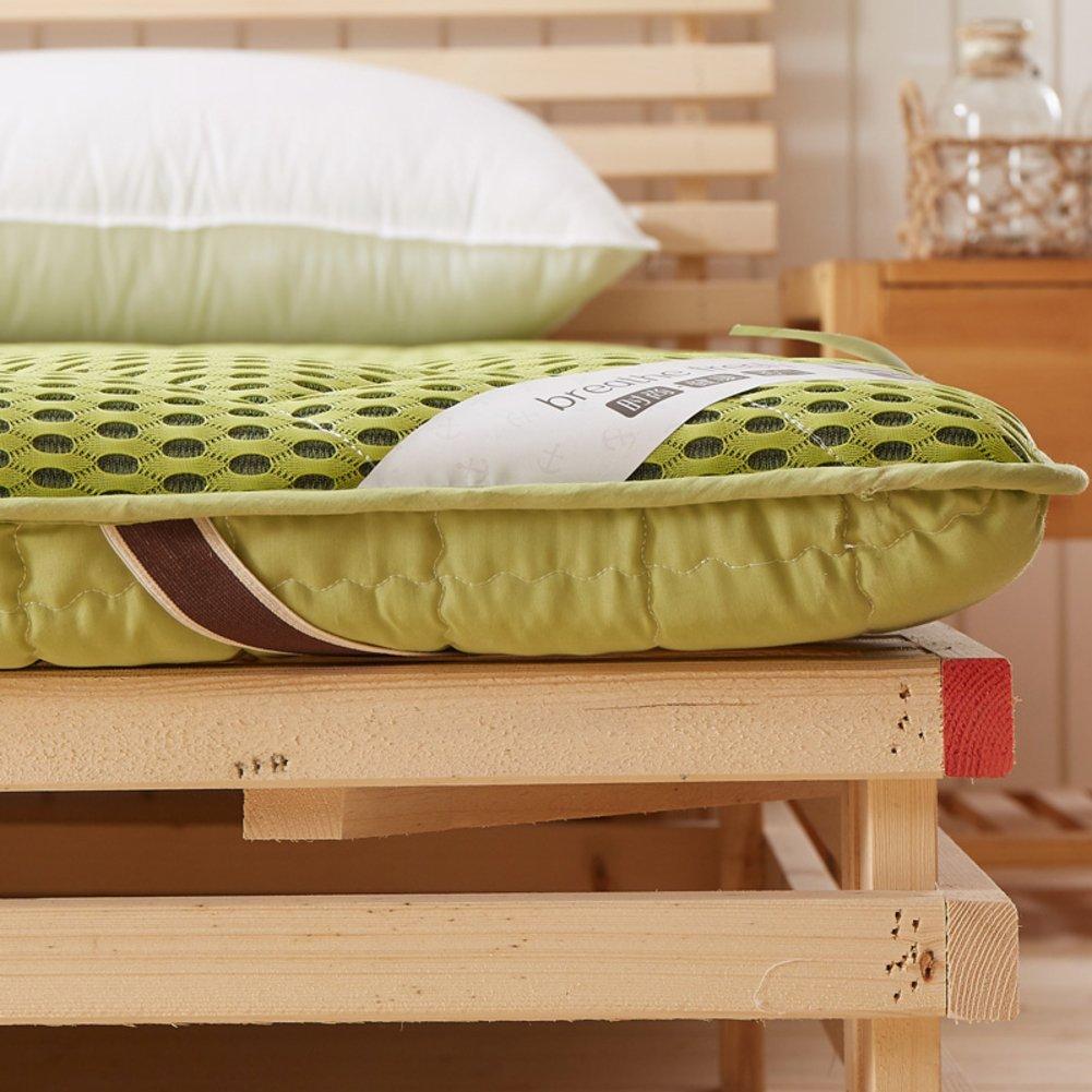 LLSVSDF Cama de colchón de Tatami Engrosado colchón de Estudiantes Dormitorio colchón de Esponja colchón de Tierra-C 100x200cm(39x79inch): Amazon.es: Hogar