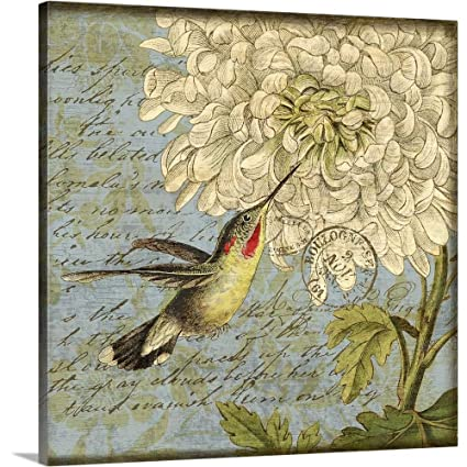 Amazon com: Gallery-Wrapped Canvas Entitled Hummingbird