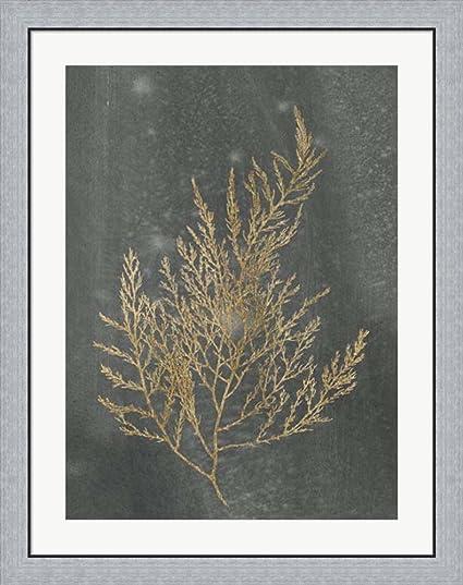 Gold foil algae ii on black metallic foil by jennifer goldberger framed art print wall