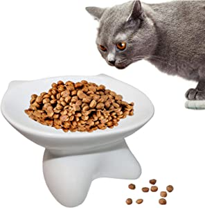 kathson Raised Ceramic Cat Bowl, Pet Food Bowl, Anti Vomiting Stress Free Tilted Elevated Bowls for Flat-Faced Cats, Small Dogs