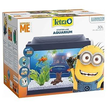 Tetra - Acuario Starter Line Edición Minions - 30L: Amazon.es: Productos para mascotas