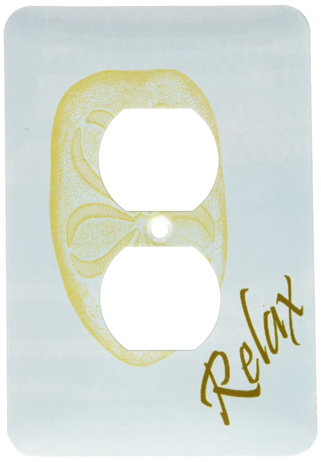 3dRose lsp/_63639/_6 Relax Sand Dollar Beach Themed Art in Calming Blue Light Switch Cover