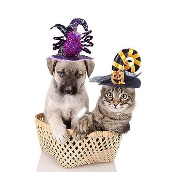 POPETPOP Dos Sombreros para Mascotas,Halloween,Cintas ...