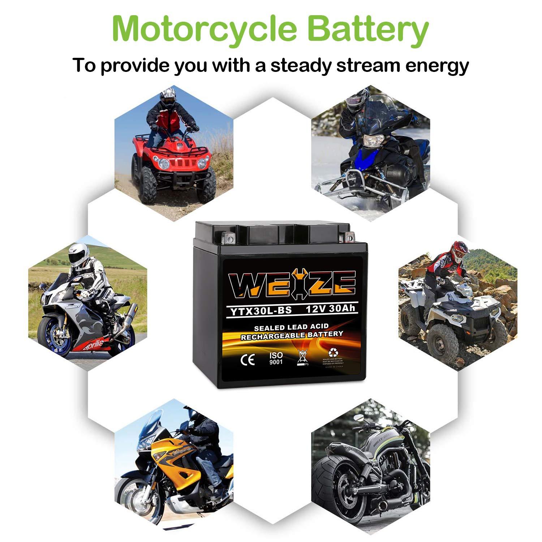 Amazon.com: Weize YTX30L-BS Batería de repuesto Yuasa YIX30L ...