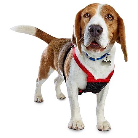71QbfgbqiFL._SX466_ amazon com good2go red no pull dog harness, large pet supplies