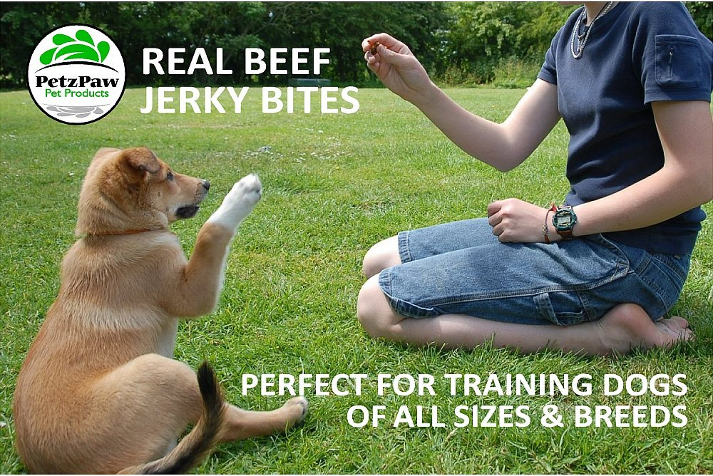 Beef Jerky Dog Treats - Natural Made in the USA - Pet Training Treat by PetzPaw Pet Products (Image #5)