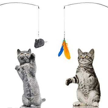 Amazon.com: 7 in1 kit interactiva, juguetes de gatos Feather ...