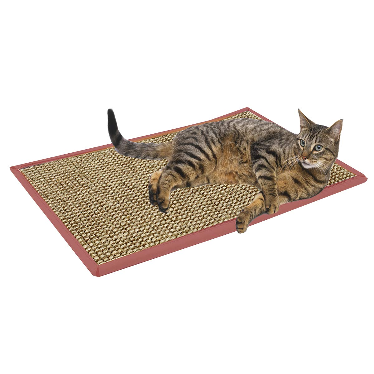 Treasborn Durable Cat Scratcher Thick Sisal Scratching Pad for Cats Anti-Slip Scratch Sleeping Mat No Mess Furniture Protecter Natural for Claws by Treasborn