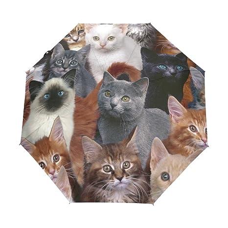 JSTEL Cat Windproof UV Umbrellas Auto Open Close 3 Folding Golf Strong Durable Compact Travel Sun
