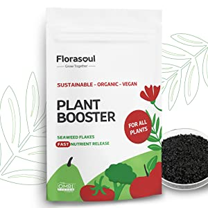florasoul's All Purpose Plant Food Seaweed Fertilizer is 200 Gallons of Water Soluble Fertilizer Organic Kelp Meal with 3-4-18 Mix Yourself Indoor Plant Fertilizer or Plant Fertilizer Outdoor