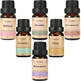 Skymore Top 6 Reine Ätherische Öle Set, 100% Pure Aroma Öle (Refresh, Sleep, Immunity, Relaxation, Decompression, Breathe), für Aromatherapie/Diffuser/Lufterfrischer Geeignet