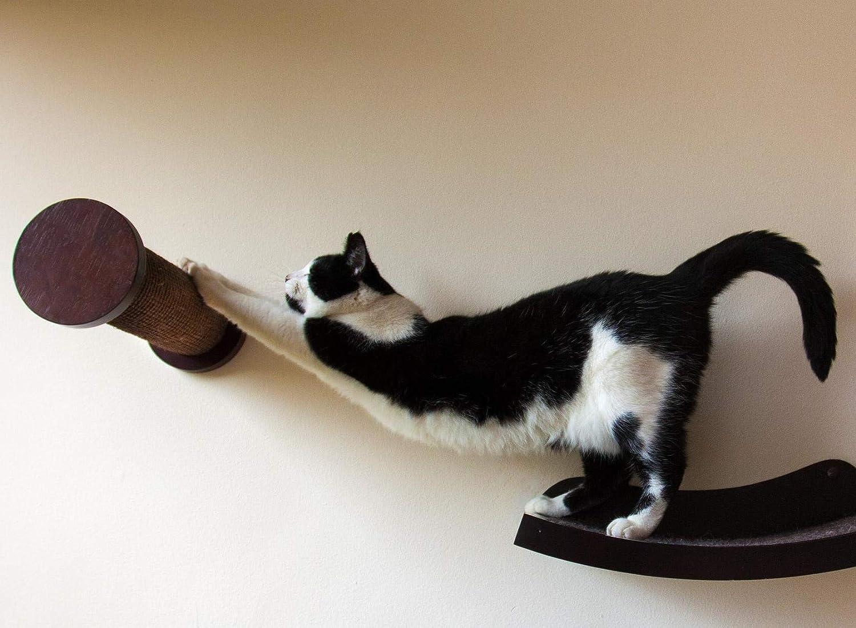 Amazon.com: Art of Paws - Cama de perca para gato con diseño ...