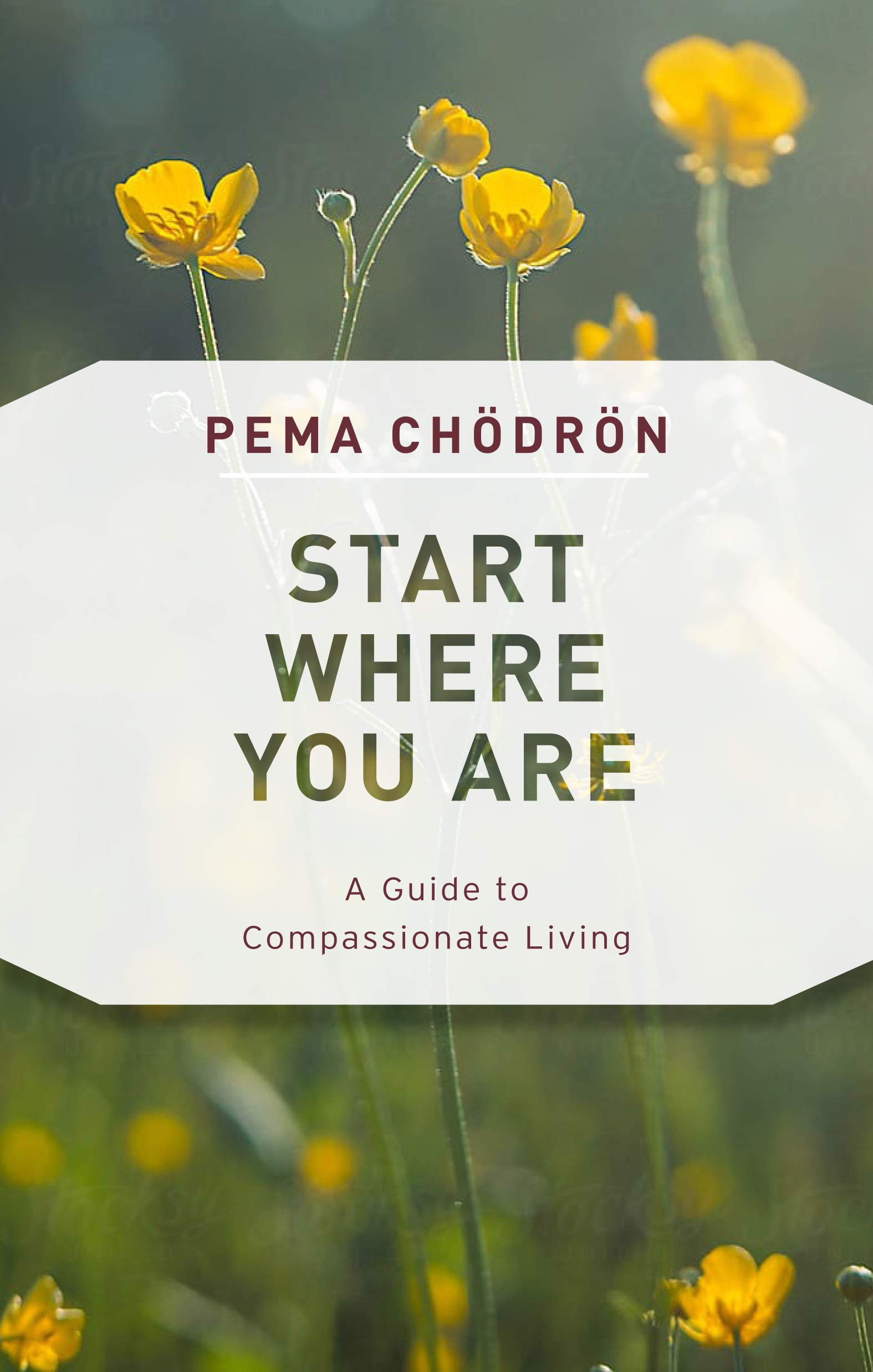 Start Where You Are Compassionate product image
