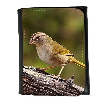 le portefeuille de grands luxe femmes avec beaucoup de compartiments // F00032100 pájaro del gorrión de oliva // Small Size Wallet: Amazon.es: Electrónica
