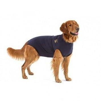 577eb2af3438 Medical Pet Shirt Small: Amazon.co.uk: Pet Supplies