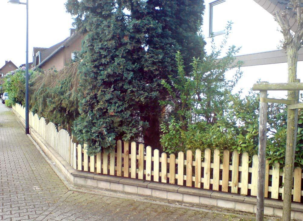 StaketenT/ür Standard 100x120//140 cm kesseldruckimpr/ägniert oben gebogene Ausf/ührung kdi // V2A Edelstahl Schrauben verschraubt aus frischem Holz gehobelt oben