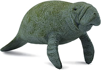 Sitting Toy Figure Authentic Hand Painted Model CollectA Sea Life Manatee Calf