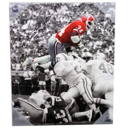 9b67f0ffc Image Unavailable. Image not available for. Color: Herschel Walker Georgia  Bulldogs Autographed Signed Spotlight Jumping Canvas with 82 Heisman  Inscription ...