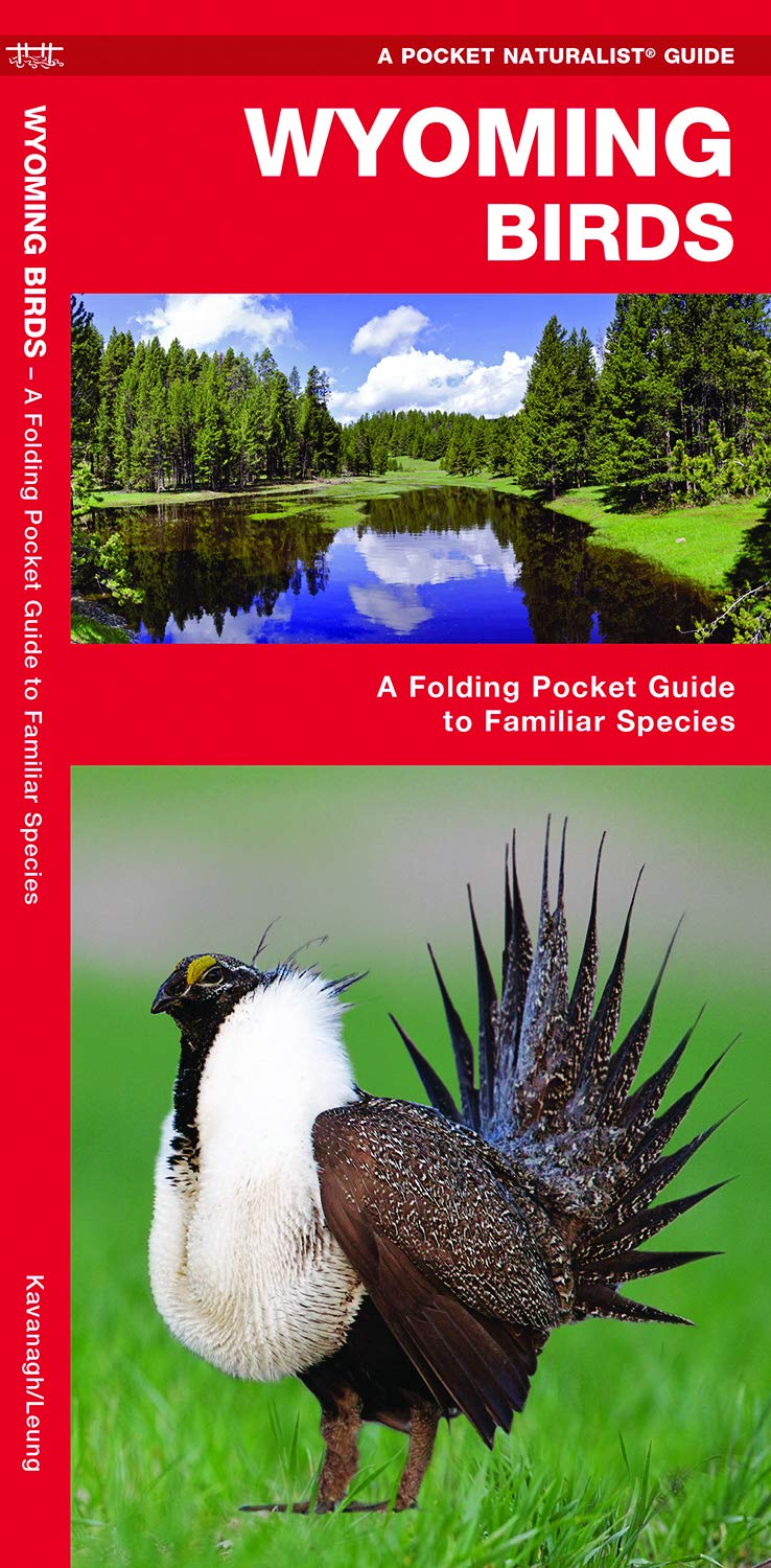 Wyoming Birds: A Folding Pocket Guide to Familiar Species (A Pocket Naturalist Guide) pdf